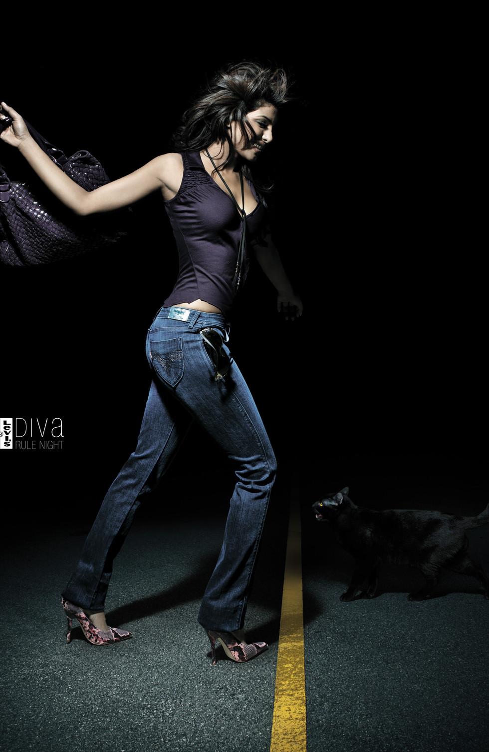 Levis - Diva cat 2.jpg