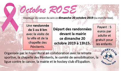 Affiche octobre rose1.png