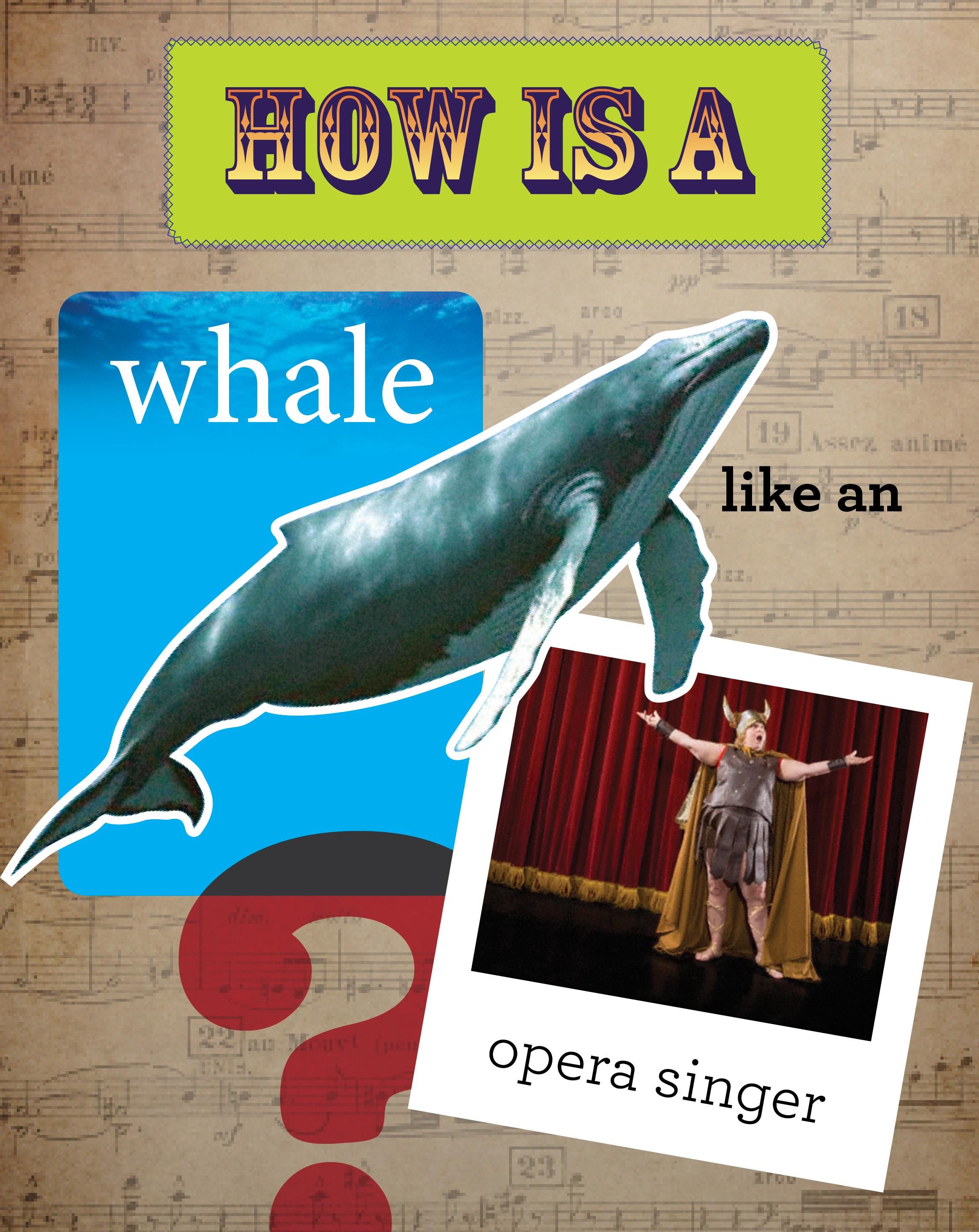 Animals Like Us-whales.jpg