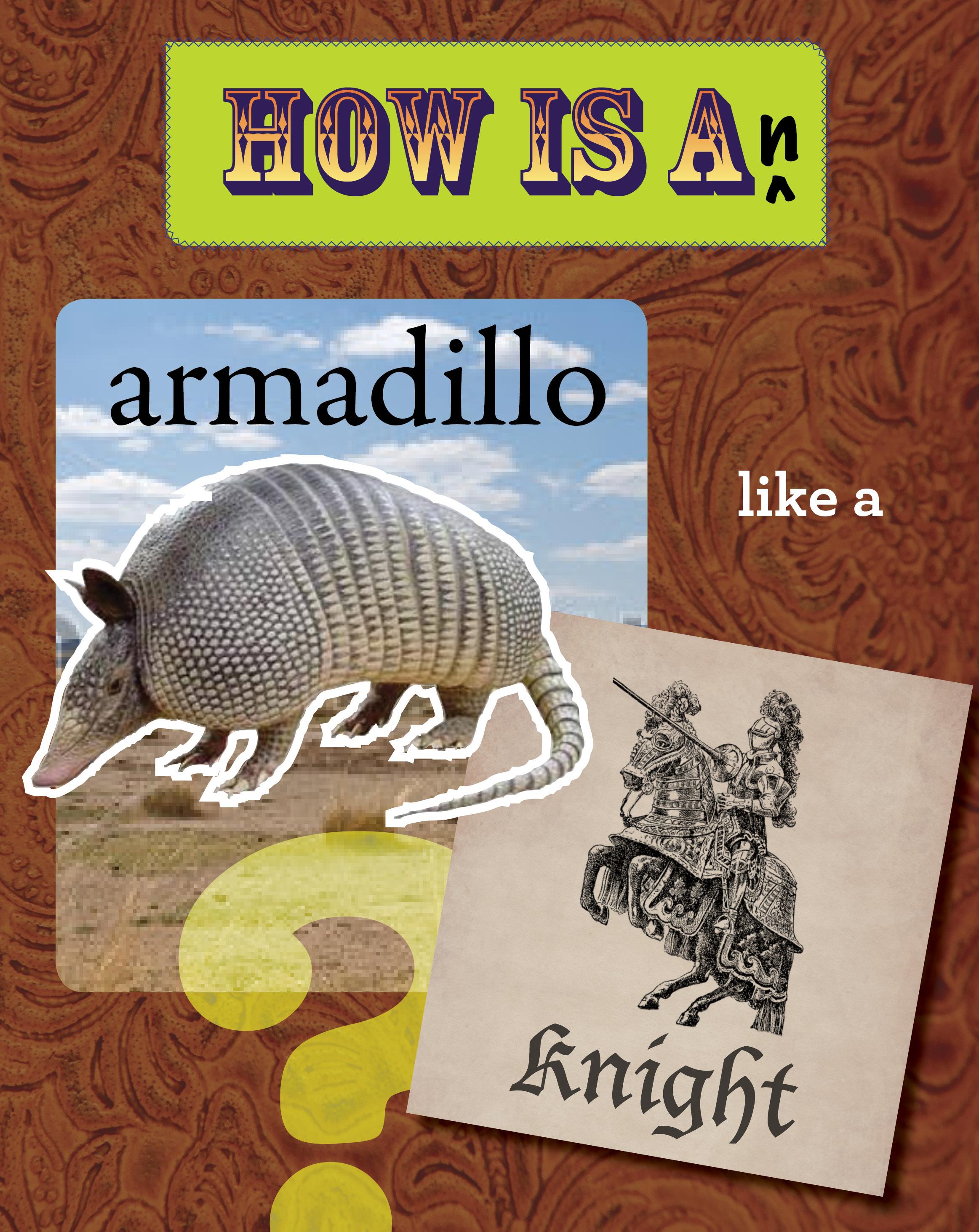 Animals Like Us-armadillo.jpg