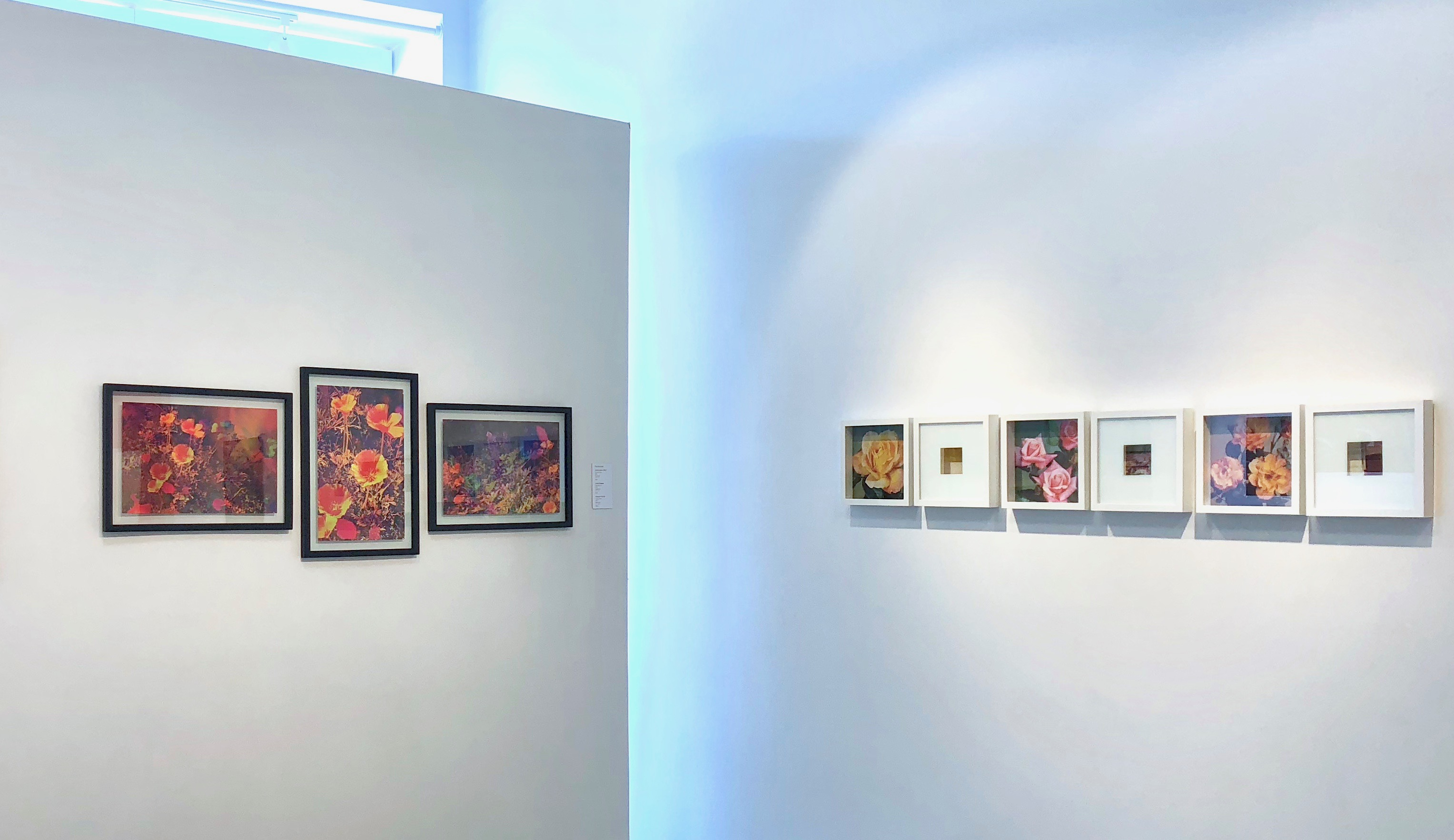 2nd Annual Anniversary Exhibition