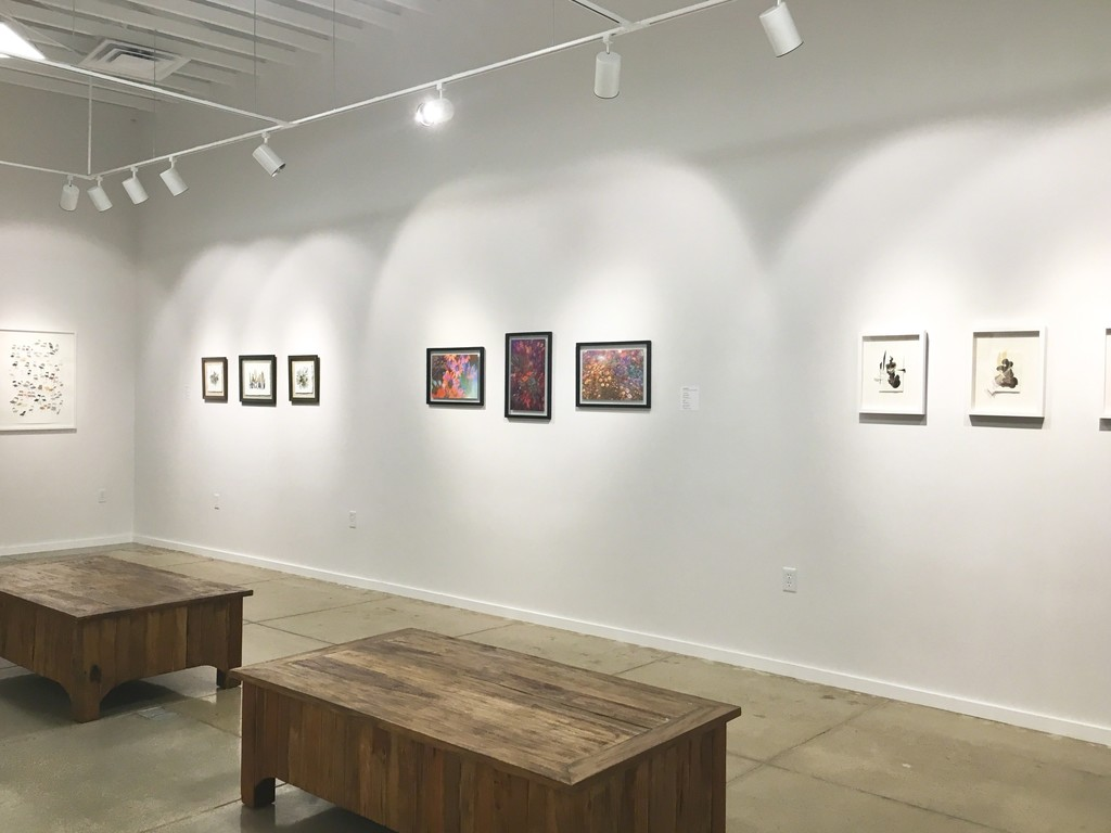 1st Annual Anniversary Exhibition