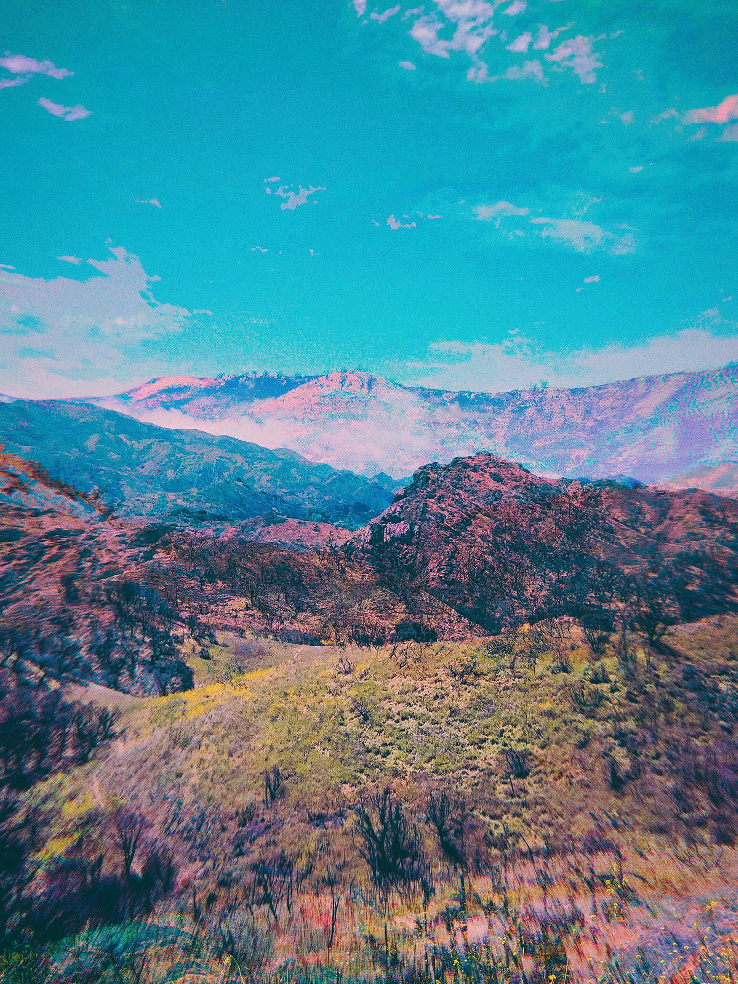 Sea Of Hills