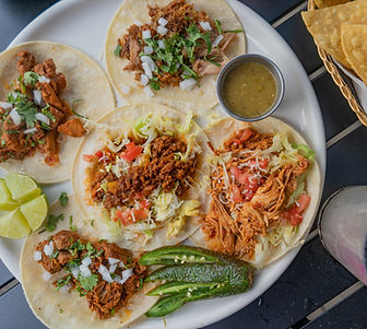 Tacco, Tuesday, Tecate Grill, Fort Collins, Colorado