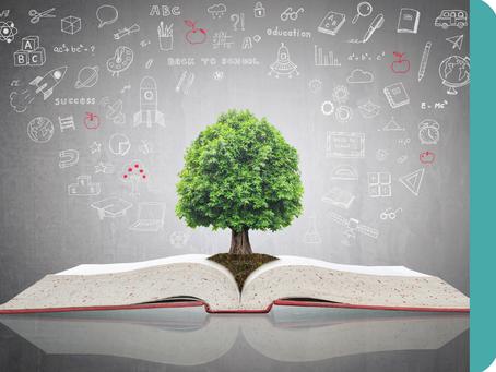 Quelles matières choisir au lycée pour faire des études de droit ?
