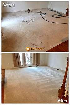 best carpet cleaning service near me