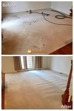 Carpet Cleaning - Deep Shampoo