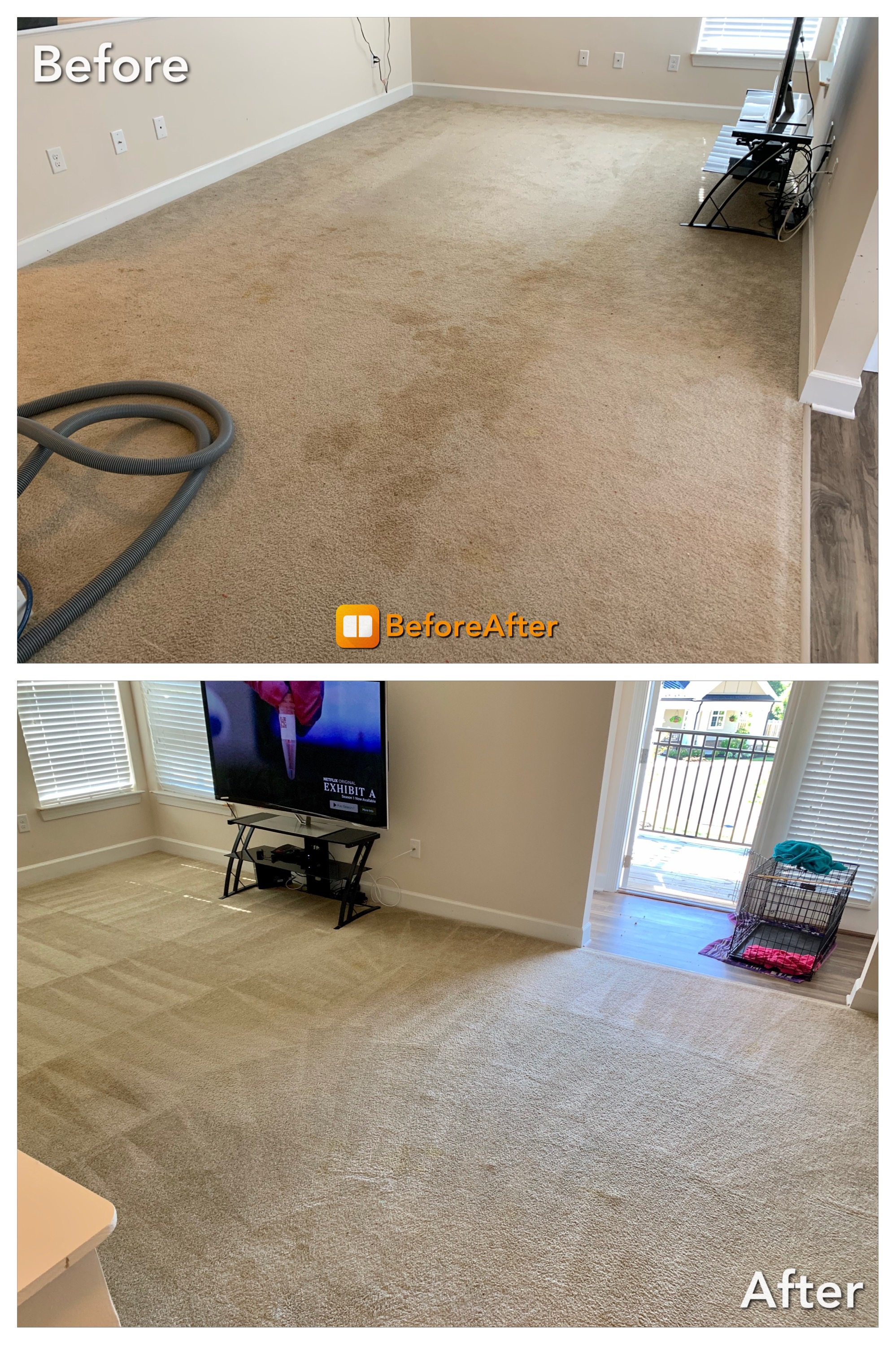 Carpet Cleaning - urine stains