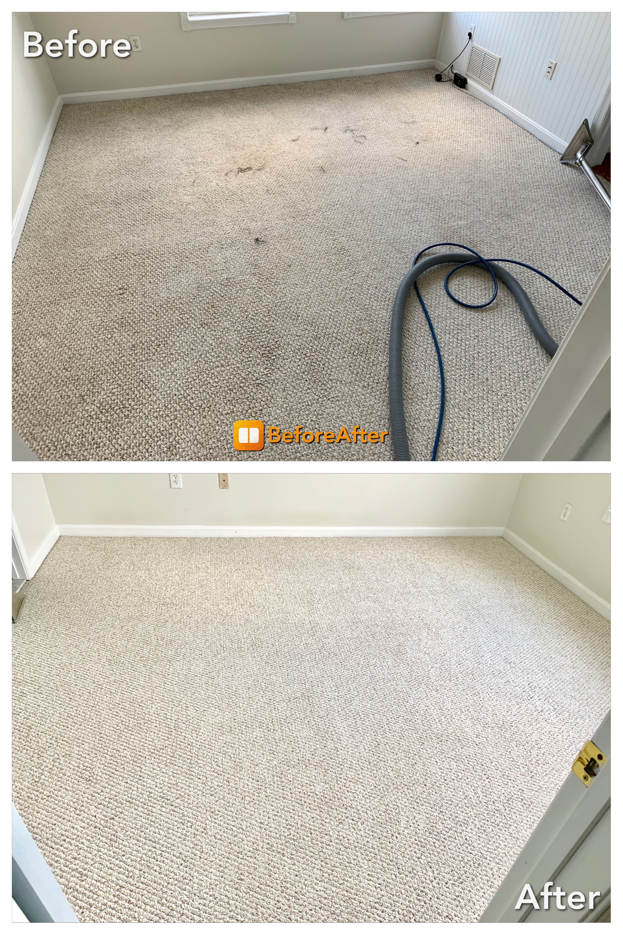Carpet Cleaning - Traffic area