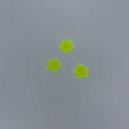 Starfish Acrylic Set