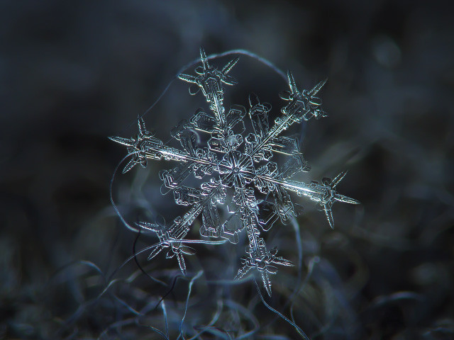 AWESOME #2: Snowflake Photography By Alexey Kljatov