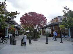 University Village, Seattle