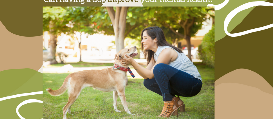 Can having a dog improve your mental health?