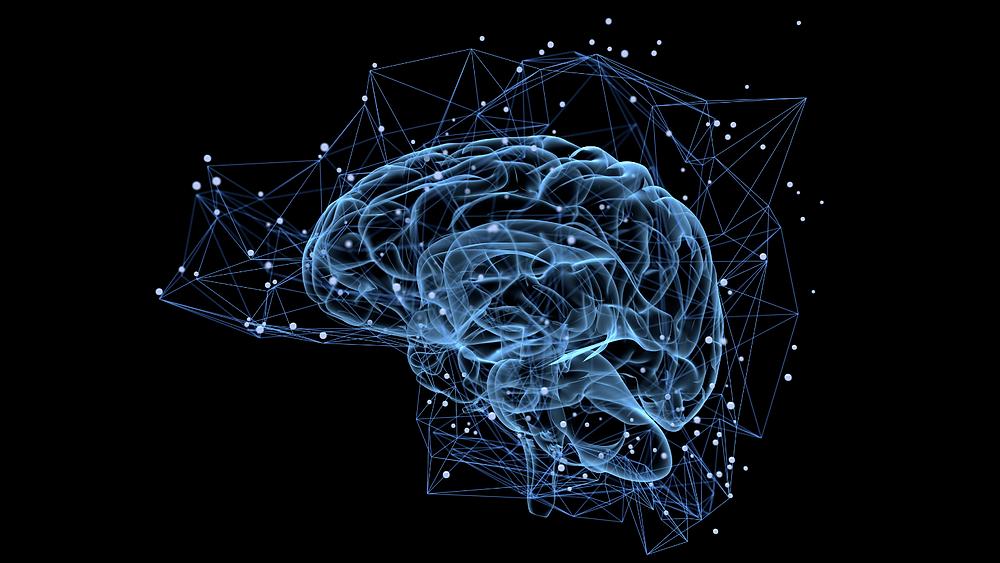 The Brain + Bass- Health & Bass- SUBPAC