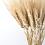 Thumbnail: Natural Triticum Wheat Bunch - Golden