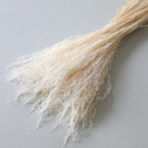 Munni Grass - White