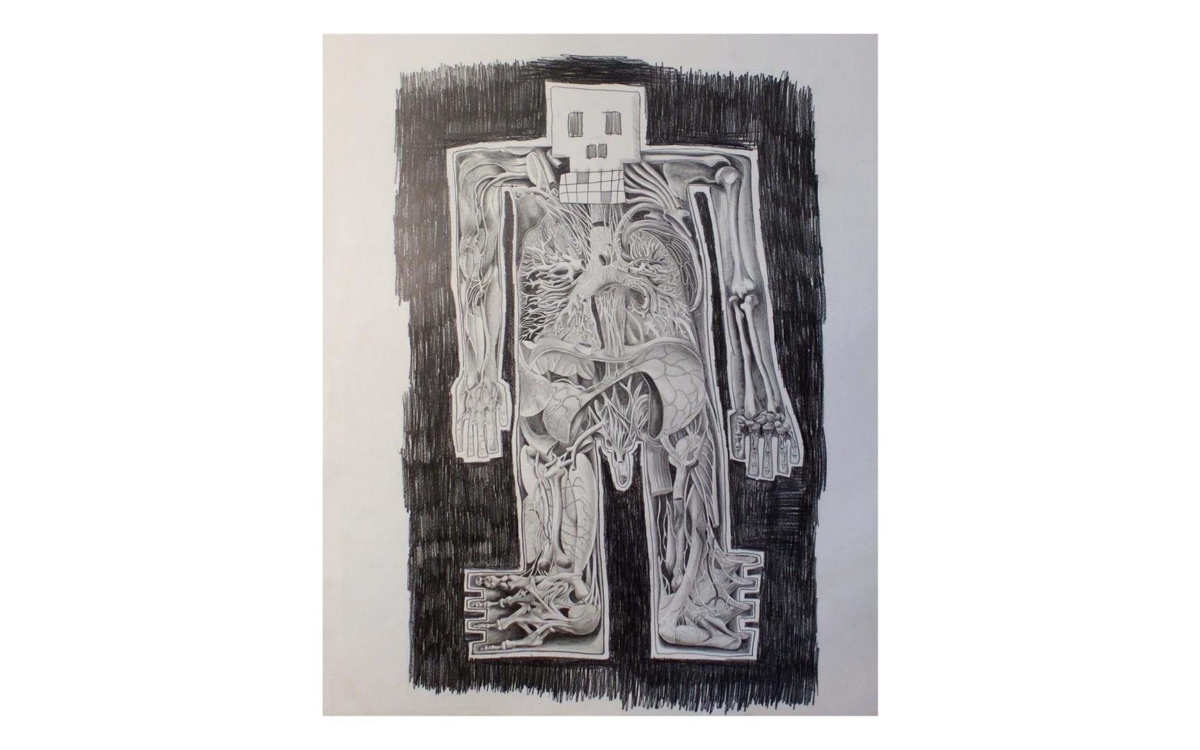 dessin anatomique