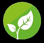 plantène environnement plantes bien etre ecologie fours sechoirs solaires toilettes sèches ebeniste