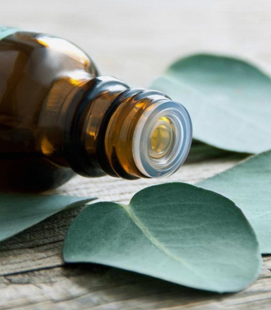 Energizing Blue Eucalyptus Massage