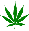 Cannabis-leaf-silhouette.png