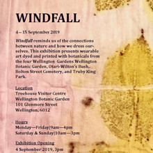 Windfall Exhibition Invitation.jpg