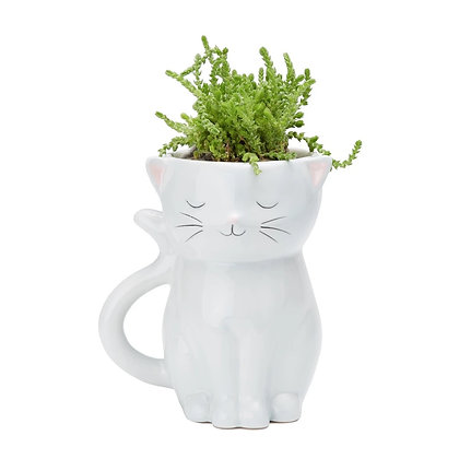 Sweetie Cat Planter