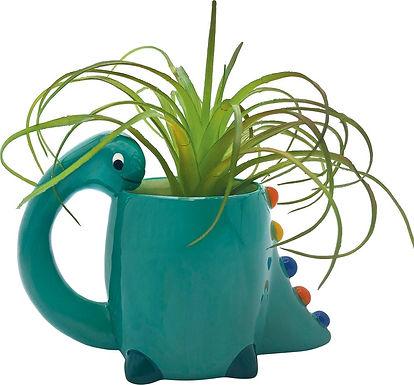 Dino Planter/Catch-All