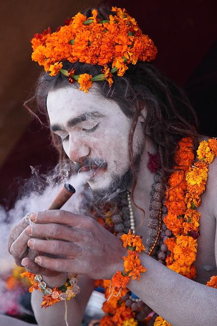 sadhu, baba naga, samnyasin, India, Inde, Kumbh Mela