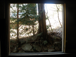 window at west