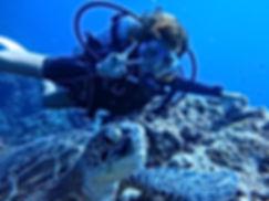 ケラマで海亀