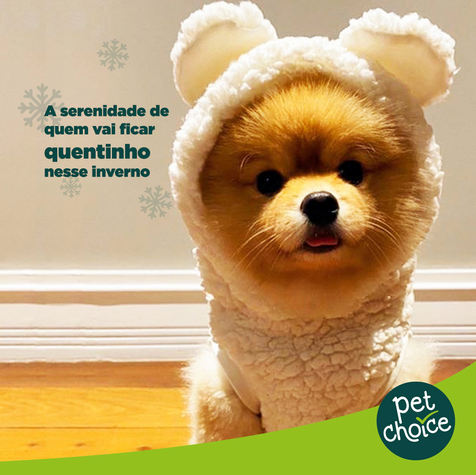 Pet Choice: proteja-se do inverno