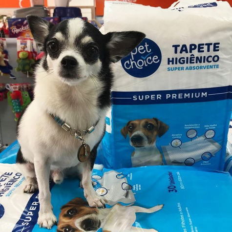 [Petland] Tapetes Pet Choice_atrativo.jp