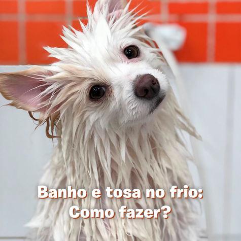 Banho e tosa no frio