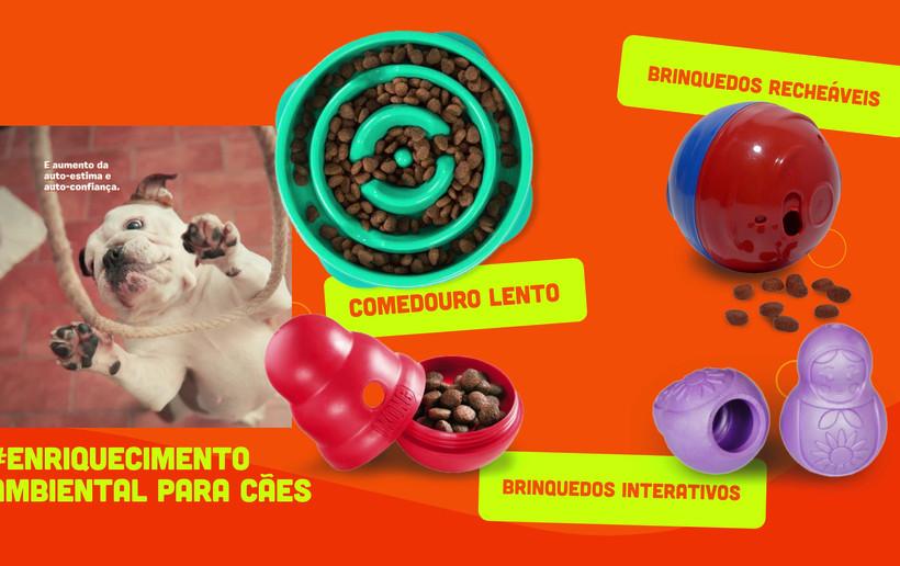 Enriquecimento_Ambiental_para_Cães_-_VÃ