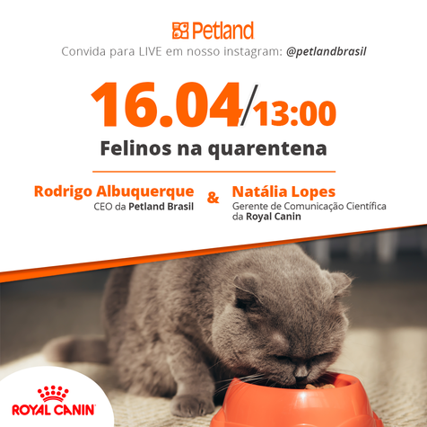 Post - Live - Petland e Royal Canin -
