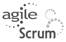 logo-agile-scrum_edited.png