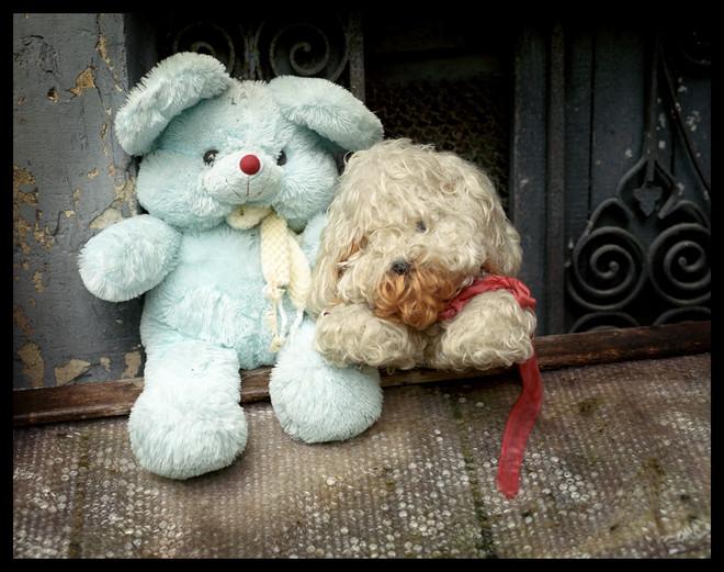 Doggie and Teddy Bear