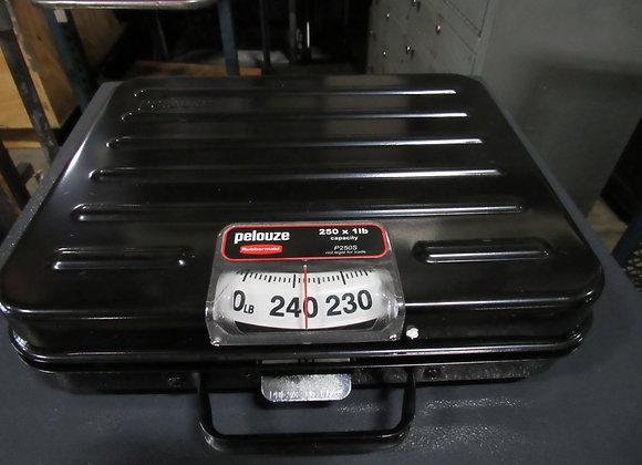 Rubbermaid Pelouze SS Briefcase Receiving Dial Scale 250lb x 1lb