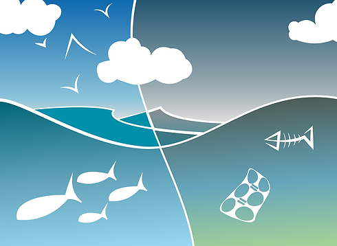 image for microplastics in sea.png