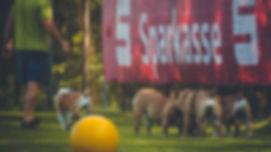 Der Bea,Bulwye-Bulls Bulldogs,Bastheim