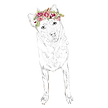 FLOWER%20CROWN%20TERRY_edited.png