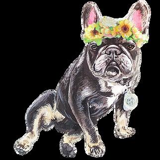 Classic Flower Crown Custom Pet Portraits