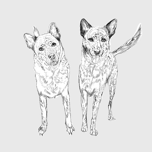 DIGITAL SKETCH (2 Pets)