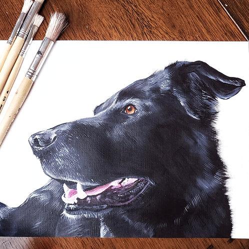 CLASSIC PET PORTRAIT ON PAPER (includes white matting board)