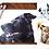 Thumbnail: CLASSIC PET PORTRAIT ON PAPER (includes white matting board)