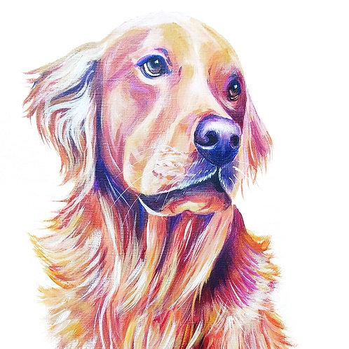 COLORFUL PET PORTRAIT ON PAPER (Includes white matting board)