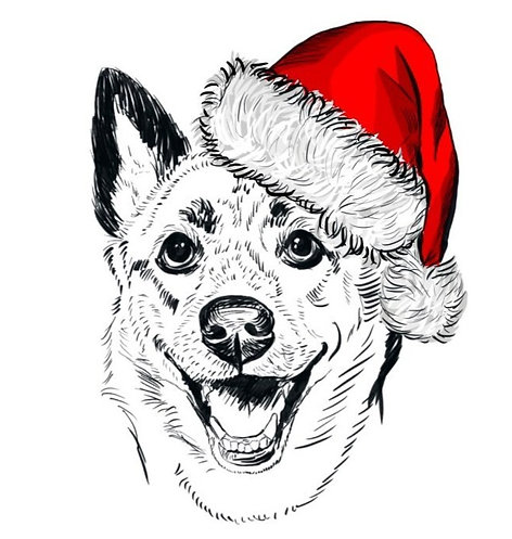 ADD ON - Santa Digital Theme (1 Pet)