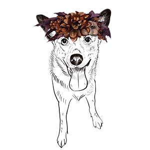 ADD ON: Fall Flower Crown - No Background
