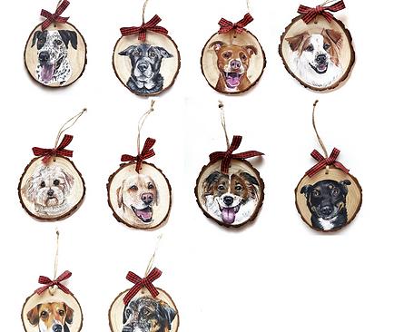 10 Wood Slice Ornament Bundle