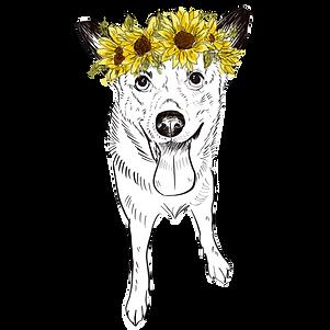 ADD ON: Sunflower Crown - No Background